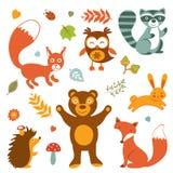 逗人喜爱的森林动物五颜六色的收藏 库存照片