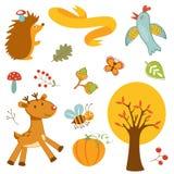 逗人喜爱的森林动物五颜六色的收藏 免版税库存图片