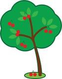 逗人喜爱的樱桃树 免版税库存图片