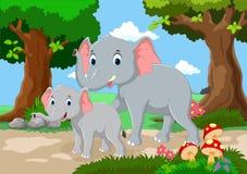 逗人喜爱的母亲和婴孩大象 免版税库存图片