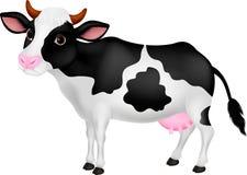 逗人喜爱的母牛动画片 图库摄影
