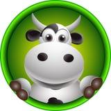 逗人喜爱的母牛题头动画片 免版税库存照片