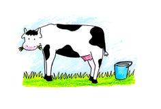 逗人喜爱的母牛 免版税图库摄影