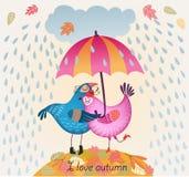 逗人喜爱的浪漫图片 两只鸟亲吻 免版税图库摄影