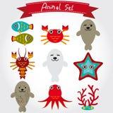 逗人喜爱的海洋动物的传染媒介例证设置了包括海狗,章鱼,鱼,珊瑚,螃蟹,龙虾 免版税库存照片