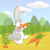 逗人喜爱的灰色和白色动画片兔子 免版税库存照片