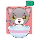 逗人喜爱的灰色的猫饿 免版税库存照片
