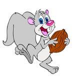 逗人喜爱的灰鼠用核桃 免版税库存照片