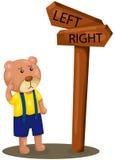 逗人喜爱的熊失去的方向 免版税库存图片