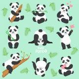 逗人喜爱的熊猫字符用被设置的不同的情况 皇族释放例证