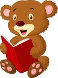 逗人喜爱的熊读书 库存照片