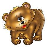 逗人喜爱的熊 免版税库存图片
