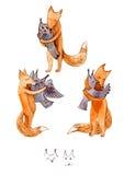 逗人喜爱的狐狸和猫头鹰 免版税库存照片