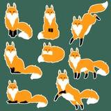 逗人喜爱的狐狸贴纸集合 免版税库存照片