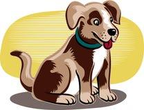 逗人喜爱的狗一点 免版税图库摄影
