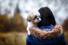 逗人喜爱的狗女孩她 库存照片