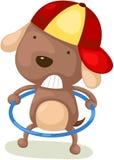 逗人喜爱的狗旋转的hula箍 图库摄影