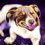 逗人喜爱的狗表示 免版税库存图片