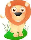 逗人喜爱的狮子身分 库存图片