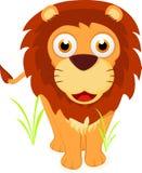 逗人喜爱的狮子身分 免版税图库摄影