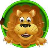逗人喜爱的狮子题头动画片 免版税图库摄影