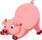逗人喜爱的猪动画片 免版税库存图片