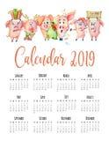 逗人喜爱的猪用南瓜收获感恩2019年模板手拉的水彩. 艺术, 汉语.
