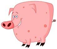 逗人喜爱的猪 皇族释放例证