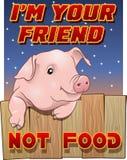 逗人喜爱的猪- I ` m不是您的朋友食物 免版税库存照片