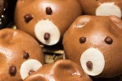逗人喜爱的猪baozi汉语蒸的小圆面包 免版税图库摄影