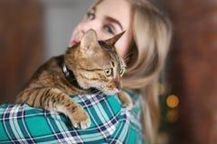 逗人喜爱的猫在所有者` s手上 库存照片