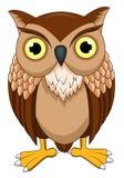 逗人喜爱的猫头鹰动画片 向量例证