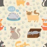 逗人喜爱的猫字符另外姿势传染媒介无缝的样式 免版税库存照片