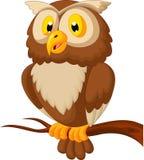 逗人喜爱的猫头鹰动画片 库存图片
