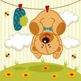 逗人喜爱的玩具熊在洗涤的垂悬在绳索以后 图库摄影