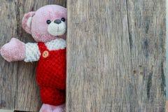 逗人喜爱的玩具熊有老木背景 库存照片