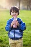 逗人喜爱的男孩,饮用的健康草莓圆滑的人在公园 免版税图库摄影