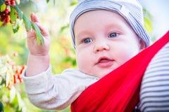 逗人喜爱的男孩婴儿在公园 库存图片