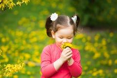 逗人喜爱的相当小女孩用黄色蒲公英 库存图片