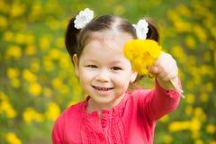 逗人喜爱的相当小女孩用黄色蒲公英 图库摄影