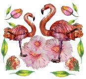 逗人喜爱的矮小的公主与桃红色火鸟例证的Abstract Background 库存图片