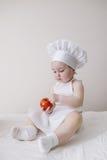 逗人喜爱的矮小的厨师吃蕃茄 库存图片