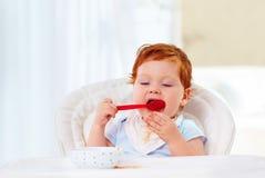 逗人喜爱的矮小的婴儿男婴学会拿着匙子和吃他自己 免版税库存照片