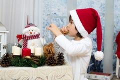 逗人喜爱的矮小的学龄前男孩圣诞节画象,吃曲奇饼 免版税库存照片