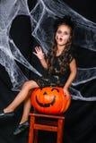 逗人喜爱的矮小的巫婆坐在背景的南瓜与蜘蛛网 免版税库存图片