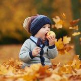 逗人喜爱的矮小的婴孩在秋天公园 免版税库存照片