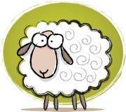 逗人喜爱的绵羊草图 库存图片