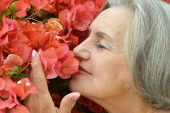 逗人喜爱的老妇人 免版税库存照片