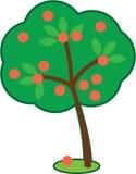 逗人喜爱的苹果树 免版税库存照片
