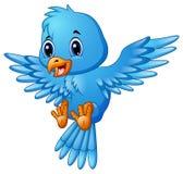 逗人喜爱的蓝色鸟动画片飞行 皇族释放例证
